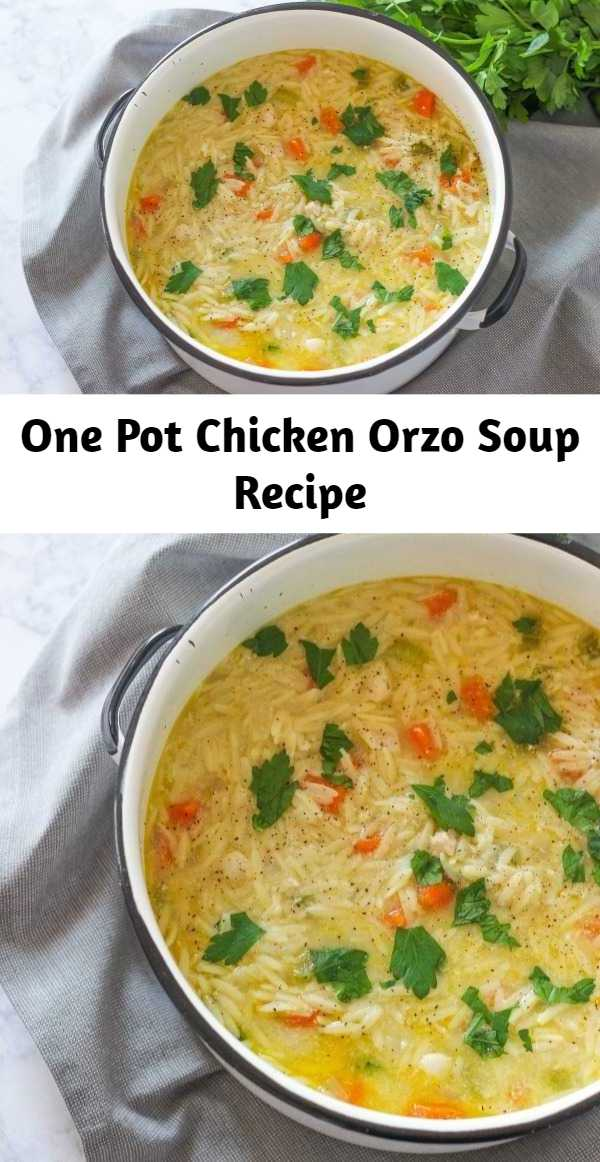 One Pot Chicken Orzo Soup Recipe - One Pot Chicken Orzo Soup is a hearty and delicious soup recipe made with wholesome vegetables, chicken, and lemon.  This is comfort food at its best.