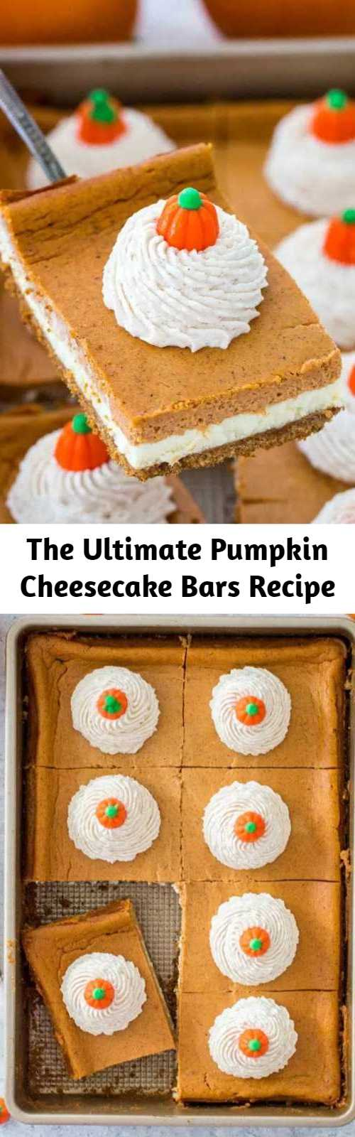 The Ultimate Pumpkin Cheesecake Bars Recipe - Pumpkin Cheesecake Bars are luxuriously creamy and rich, with lots of pumpkin flavor. Topped with a hefty amount of homemade cinnamon whipped cream.