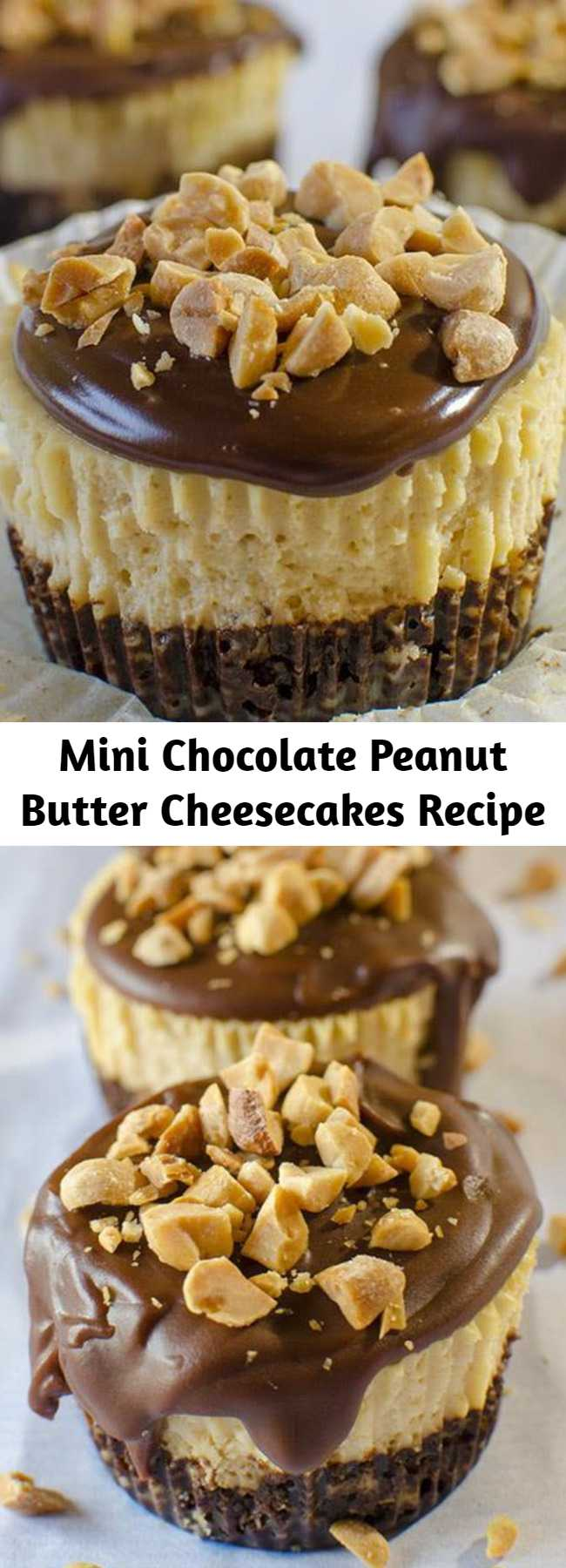 Mini Chocolate Peanut Butter Cheesecakes Recipe - Mini Chocolate Peanut Butter Cheesecakes are delicious individual portions of peanut butter cheesecakes with chocolate graham cracker crust and chocolate ganache topping. This cute homemade cheesecake recipe is a great dessert for your child's school bake sale, or your next party!