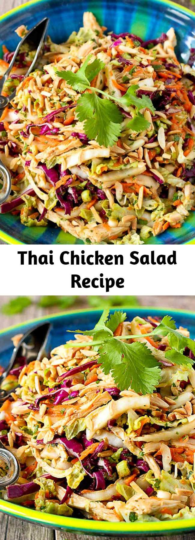 Thai Chicken Salad Recipe - This Thai Chicken Salad recipe is always the star of the show whenever it's served at our table. This easy, healthy salad come together in 15 to 20 minutes. 236 calories and 4 Weight Watchers Freestyle SP #chicken #weightwatchers #healthy #recipe