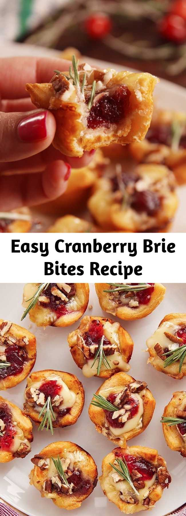 Easy Cranberry Brie Bites Recipe - These Cranberry Brie Bites are perfect for your next holiday party. Why make dough from scratch when everyone loves the canned stuff?! These little guys are the perfect appetizer to make during the holidays. Be warned: It'll forever change the way you think about brie. #easy #recipe #holidays #christmas #thanksgiving #party #appetizer #fingerfoods #apps #ideas #dinner #cranberry #brie #bites #muffintin #baked #crescentroll #pillsbury #bakedbrie