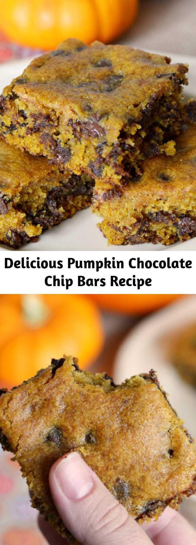 Delicious Pumpkin Chocolate Chip Bars Recipe - Soft, chewy, and delicious, these pumpkin chocolate chip bars are a delicious fall dessert!