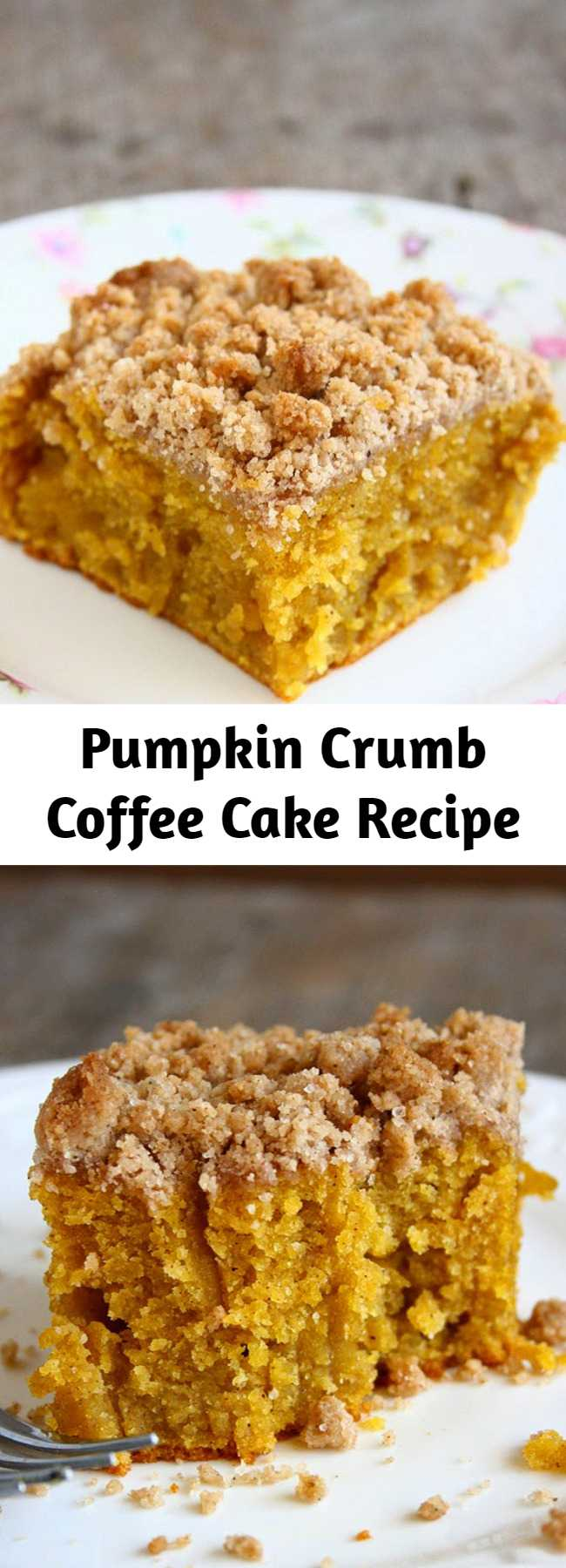 Pumpkin Crumb Coffee Cake Recipe - This was the moistest coffee cake EVER. I even wasn't sure if I can call this a coffee cake. This is insanely moist. And It keeps moist for days. It wasn't too sweet, too spicy, too dry, too moist. It had a perfect texture and a sweet, crunchy crumb topping. What else could you want??