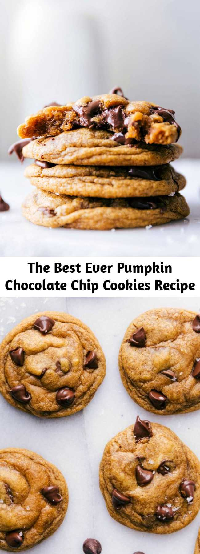 The Best Ever Pumpkin Chocolate Chip Cookies Recipe - The best-ever Pumpkin Chocolate Chip Cookies! These cookies are soft and chewy with crisp edges instead of typical cake-like pumpkin cookies.