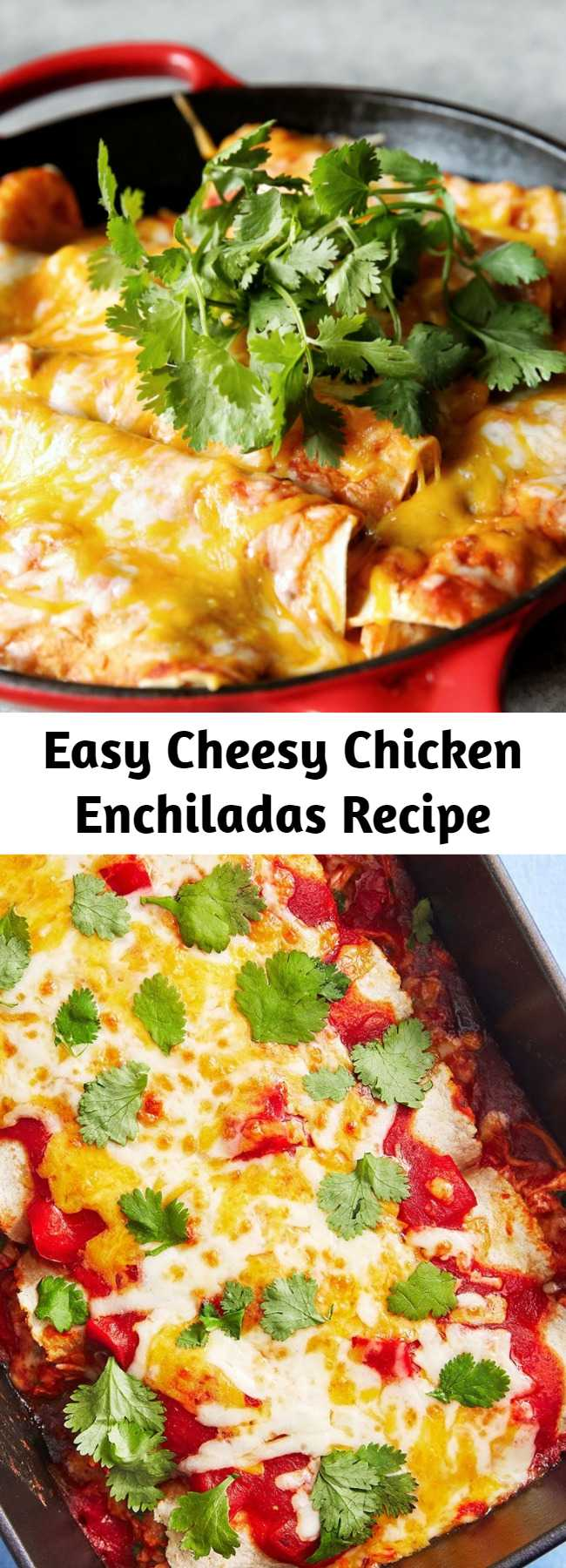 Easy Cheesy Chicken Enchiladas Recipe - These enchiladas fall somewhere in between; they're definitely Tex-Mex at their core, but we went with corn tortillas in place of flour. (Go ahead and use flour if that's your preference though!) They may not be authentic by, well, anyone's standards, but they are quick, easy, filling, and delicious.