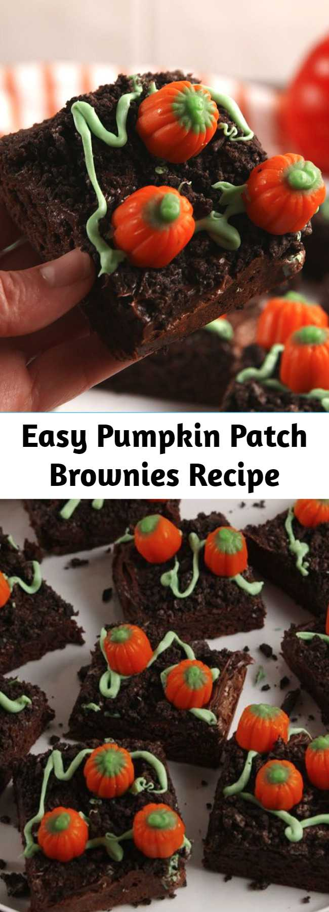 Easy Pumpkin Patch Brownies Recipe - Pumpkin patch brownies turn a regular boxed brownie into the cutest fall dessert. Top with crushed Oreos for dirt and nestle candied pumpkins to look like they are growing from the ground! So simple yet so sweet!